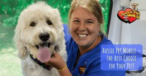 Aussie Pet Mobile – The Best Choice For Your Pet!