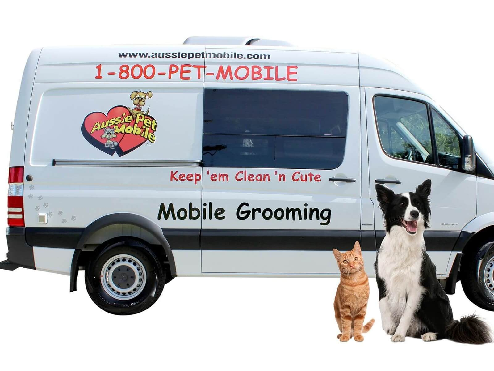 Cool Aussie Pet Mobile Windermere Mobile Grooming For Cats Dogs Beutiful Home Inspiration Xortanetmahrainfo